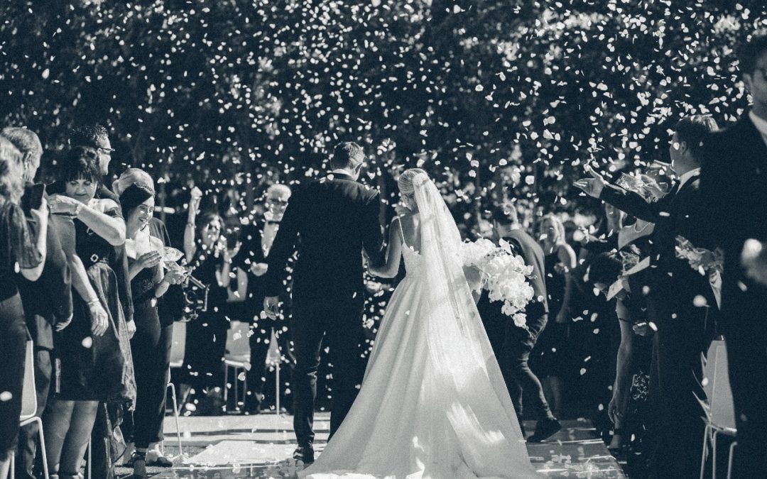 Alise & JJ Engelbrecht Wedding